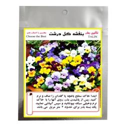 بذر گل بنفشه گل درشت تالین بذر مدل BZT-1005