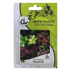 بذر گل حسن یوسف آرکا بذر ایرانیان کد ARK-019