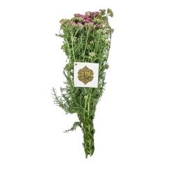 دسته گل اچیلا یاسی هیمان کد 1061