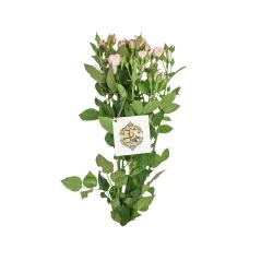 دسته گل رز مینیاتوری هیمان کد Ro11