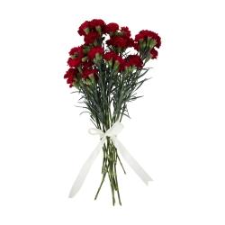 گل میخک مینیاتوری قرمز دسته 6 عددی