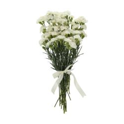 گل میخک مینیاتوری سفید دسته 6 عددی