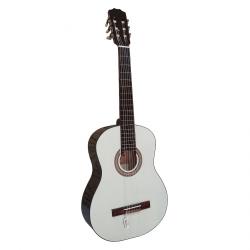 گیتار مدل A3 کد 1
