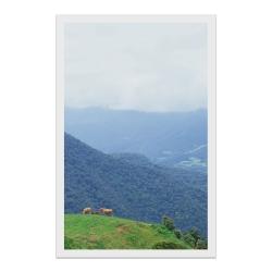 کارت پستال طرح طبیعت کد 003