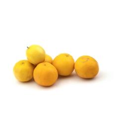لیمو شیرین  Fresh وزن 1 کیلوگرم