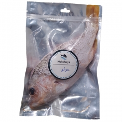 ماهی سرخو تازه ماهی دریا – 2000 گرم