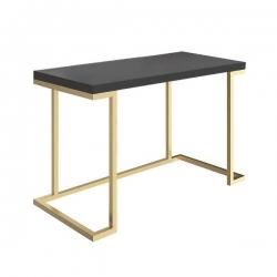 میز تحریر دیزوم مدل  WD-2-120-3