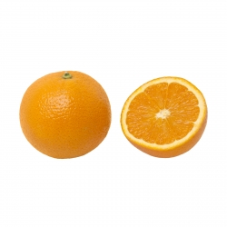 پرتقال آبگیری شمال درجه یک – 10 کیلوگرم