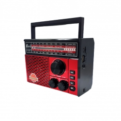رادیو فپه مدل FP-259BT-S
