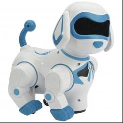 ربات مدل smart playmate