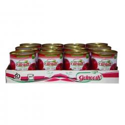 رب گوجه فرنگی گلنوش – 800 گرم بسته 12 عددی