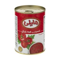 رب گوجه فرنگی هایلی – 400 گرم