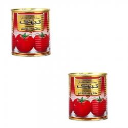رب گوجه فرنگی تبرک – 800 گرم بسته 2 عددی