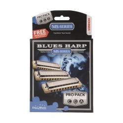 ست سازدهنی هونر مدل M5330XP -BLUES HARP