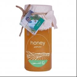 عسل خارشتر کشمون ابرام قدرتی – ۹۰۰ گرم