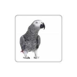 زیر لیوانی طرح طوطی کاسکو کد 4565769